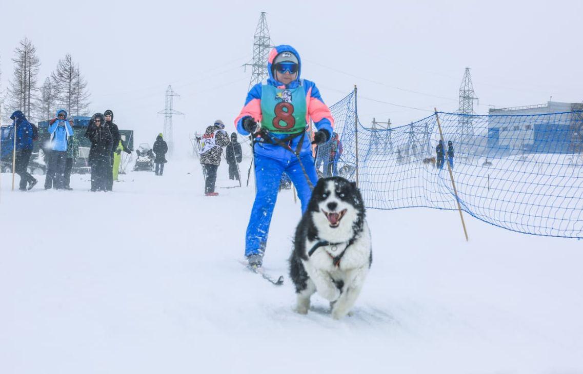 На Красных Камнях прошли соревнования по скиджорингу