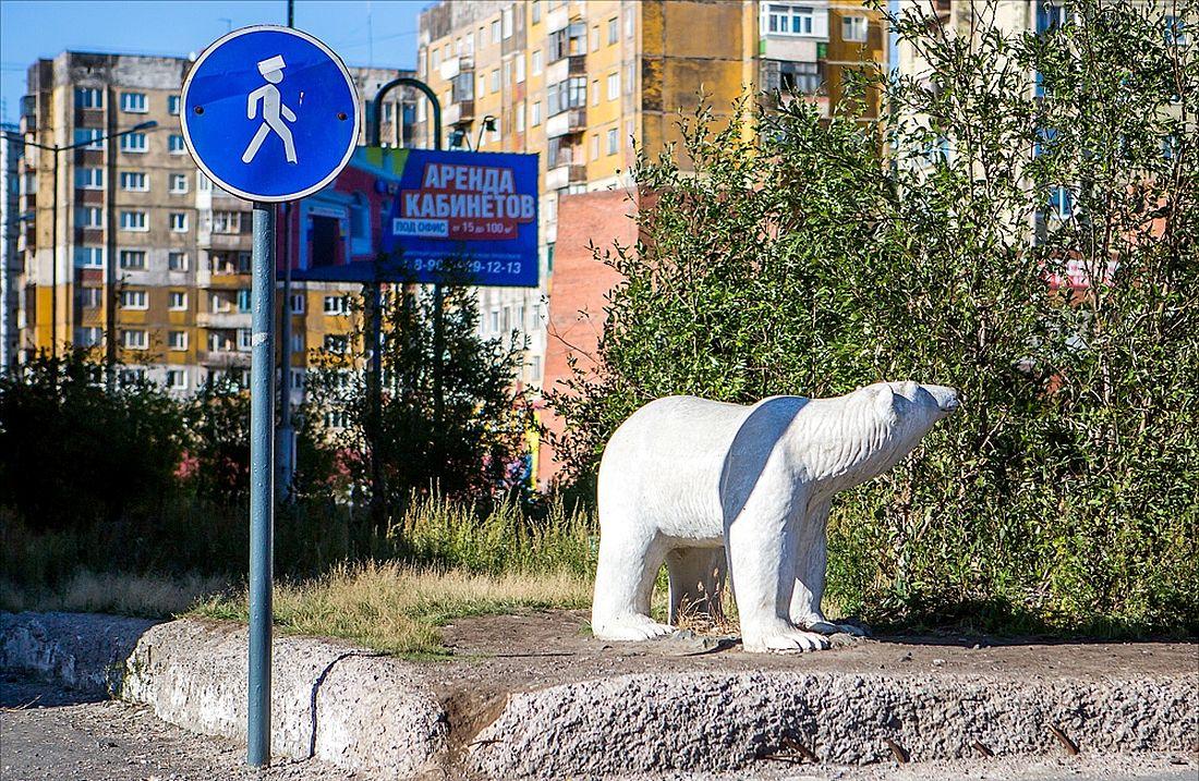 Олени, медведи и птицы счастья на улицах Норильска
