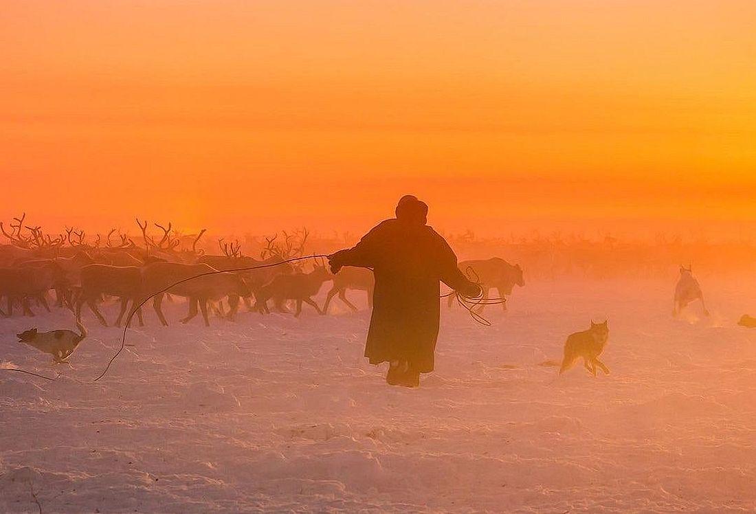 Игра теней и света: на Крайнем Севере в это время года можно сделать удивительные по красоте фотографии