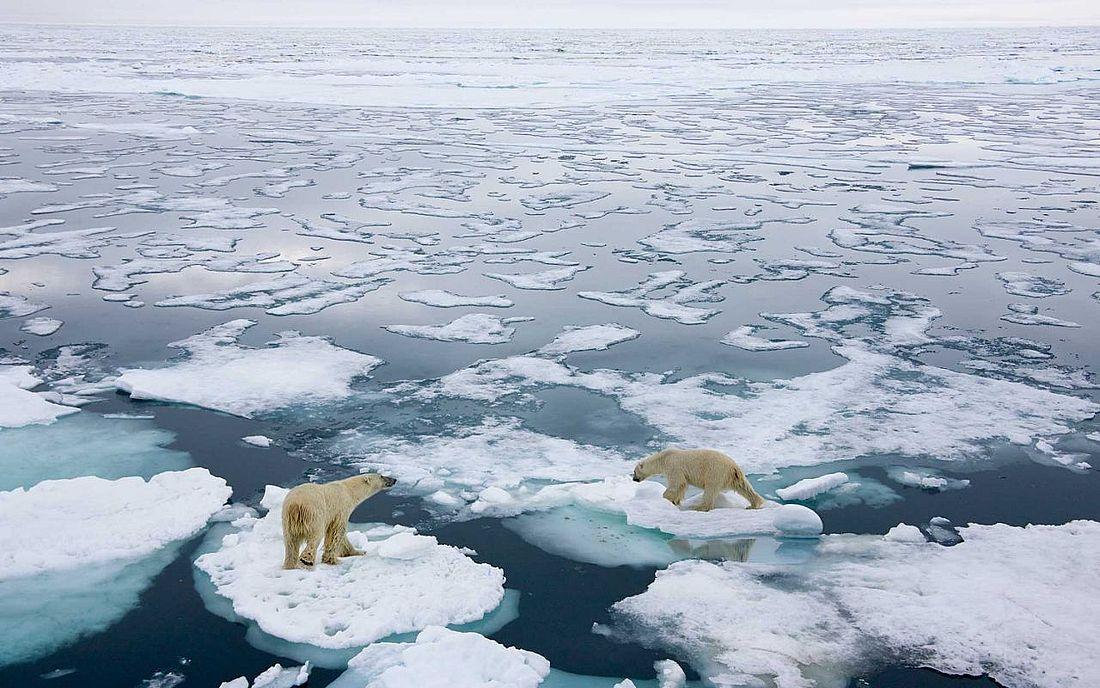 Климатологи предполагают, что Северный Ледовитый океан в ближайшие 50 лет начнет полностью освобождаться ото льда летом