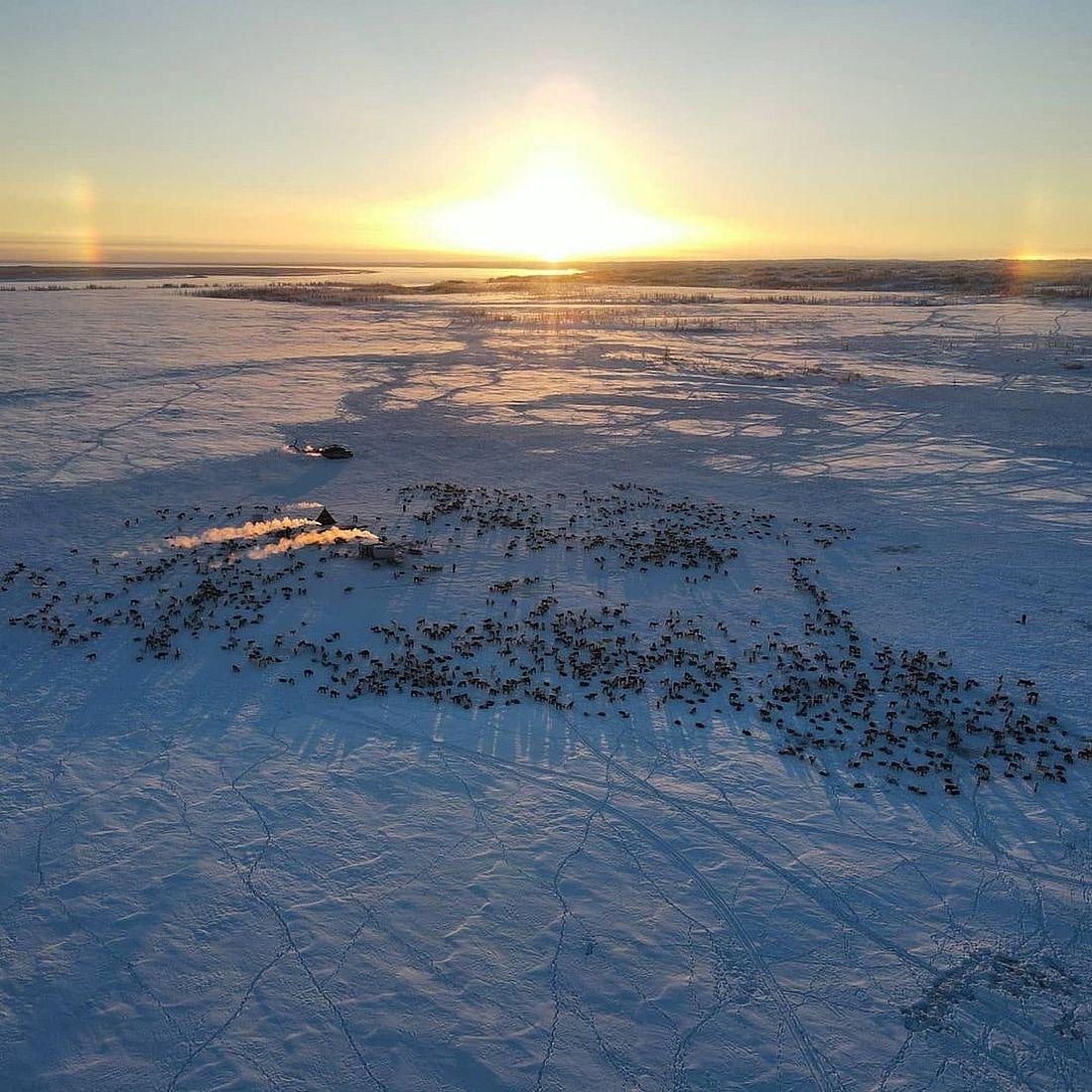 Таймыр остается одним из самых привлекательных мест для зимнего туризма в России