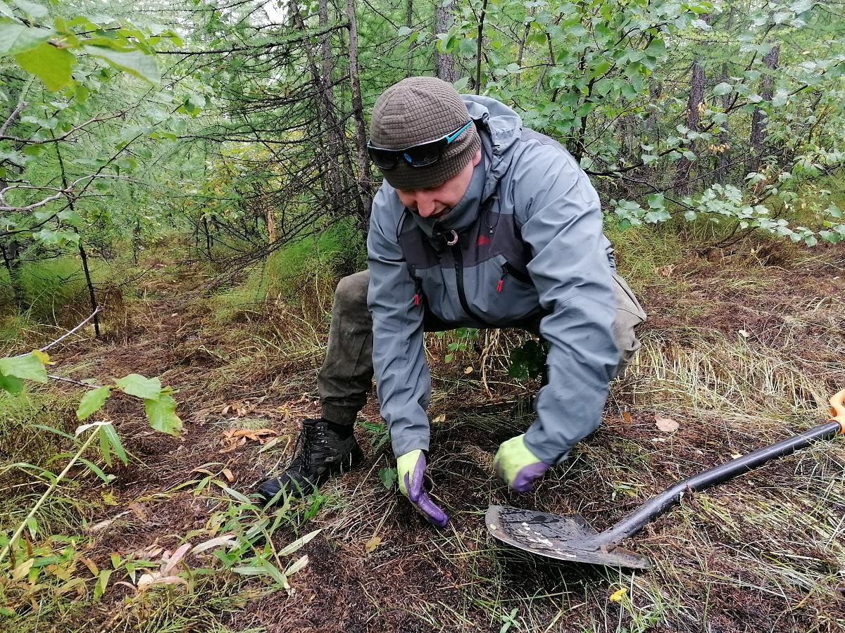 Заполярный филиал продлил трехлетнюю программу мониторинга окружающей среды