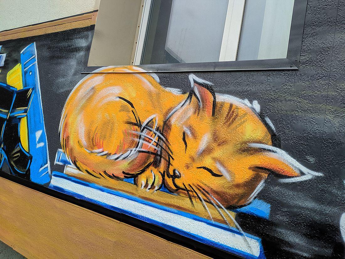 Кот на фасаде Публичной библиотеки