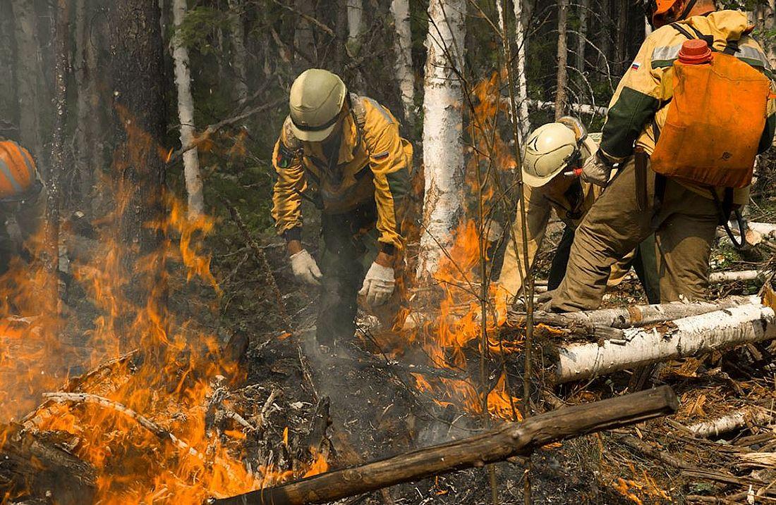 На кромке одного из труднодоступных пожаров в Сибири, 2019 год, фотоархив Авиалесоохраны
