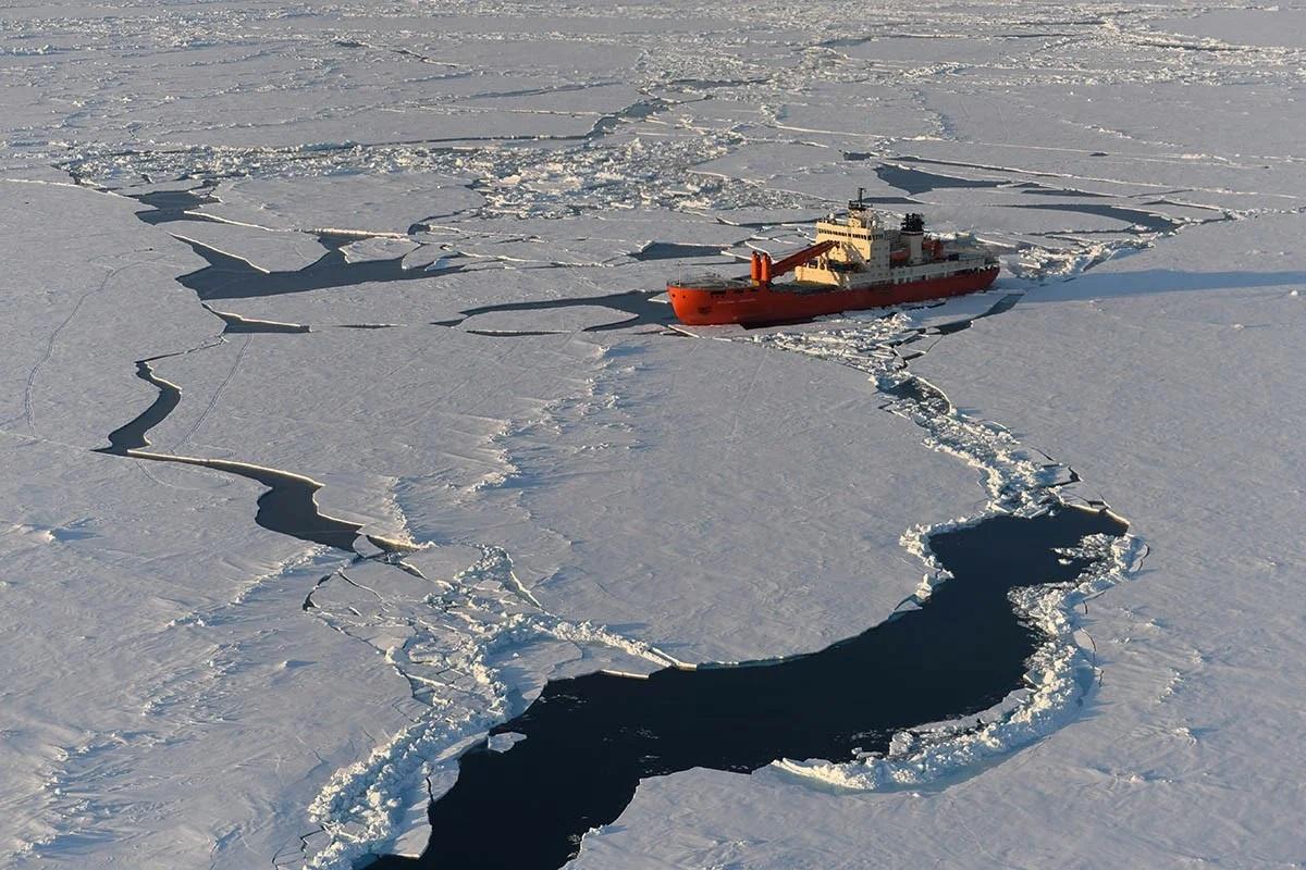 Первые два резидента Арктической зоны заключили профильные соглашения