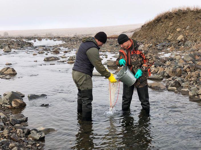 На реках Далдыкане и Амбарной продолжают работать красноярские эксперты