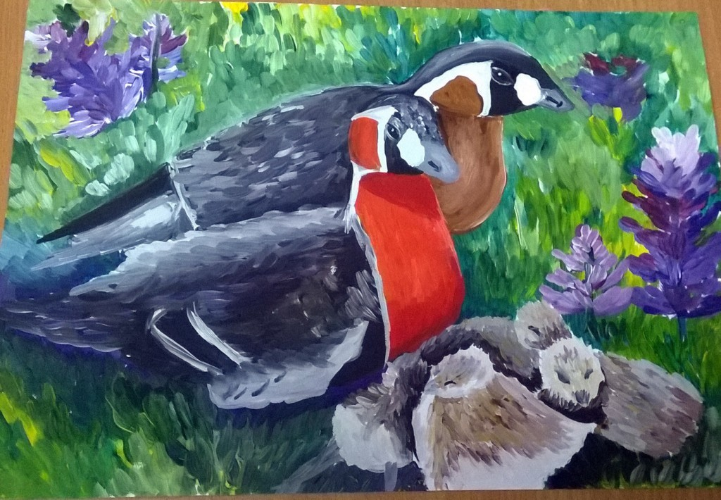 Краснозобая казарка – птица, занесенная в Красную книгу, символ Таймыра. Рисунок Гали Кожемякиной, «Марш парков – 2017»
