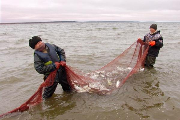 Жители поселка Левинские Пески отметили День рыбака