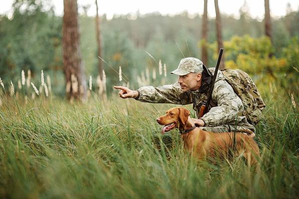 В Красноярском крае возобновили выдачу разрешений на охоту
