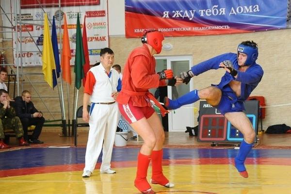 Золото краевого чемпионата по спортивному и боевому самбо отправилось в Норильск