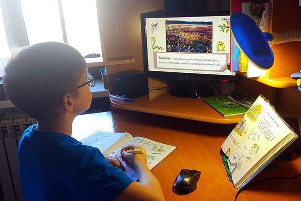 Жители края обсуждают фейки о закрытии школ на карантин в сентябре