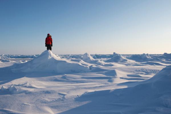 Туристические маршруты с Таймыра на Северный полюс запустят в следующем году