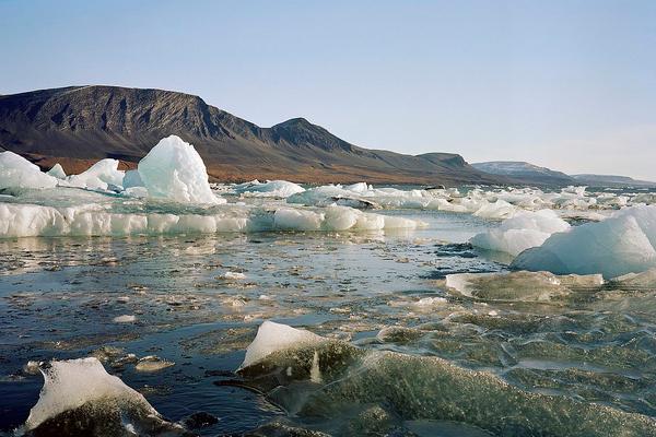 Новый остров в Арктике открыли российские школьники
