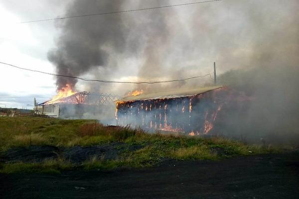 С начала лета в крае в пожарах погибли восемь человек