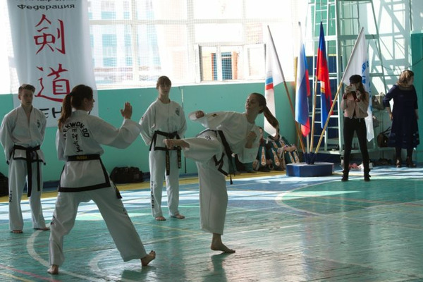 Норильчане выступят в Дудинке на соревнованиях по греко-римской борьбе и тхэквондо