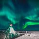 «Арктика – ближе, чем ты думаешь»: заработал туристический портал