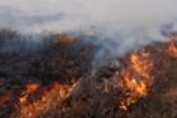 Крупный пожар в районе озера Пясино потушен