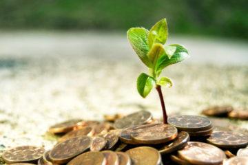Инвестиционный потенциал Красноярья презентован на форуме в Южной Корее