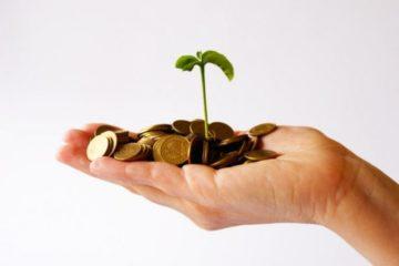 24 безработных жителя края получили гранты на осуществление предпринимательской деятельности