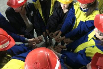 Профориентационный отряд «Ф.Е.Н.И.К.С» из норильской школы №6 признан лучшим в крае