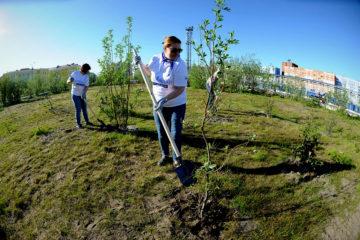 Участники корпоративного экомарафона «ПонесЛось!» поливали и удобряли деревья, которые высадили в прошлом году