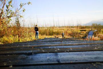 Волонтеры программы «ПонесЛось!» завершили сезон строительства экотропы в Норильске