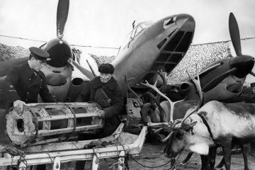 В Норильске готовят передвижную выставку о войне в Заполярье