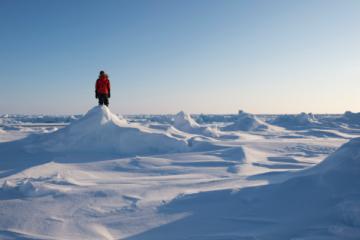 Для переезжающих на работу в Арктику предложили ввести преференции