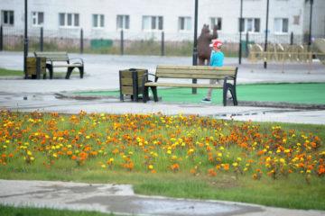 В парке отдыха «Озеро Долгое» поставят 16 спортивных тренажеров