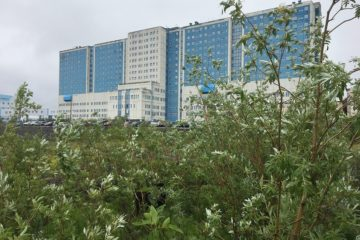 Парковку на 100 машин построят возле больницы в Оганере