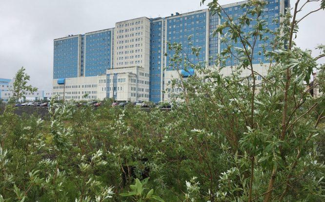 В Норильске заработал высокотехнологичный инвазивный центр