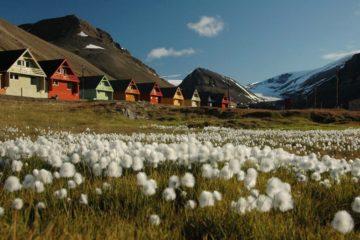 На Шпицбергене зафиксировали новый температурный рекорд