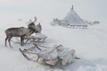 Коренным народам Севера увеличили господдержку на 19,6 миллиона рублей