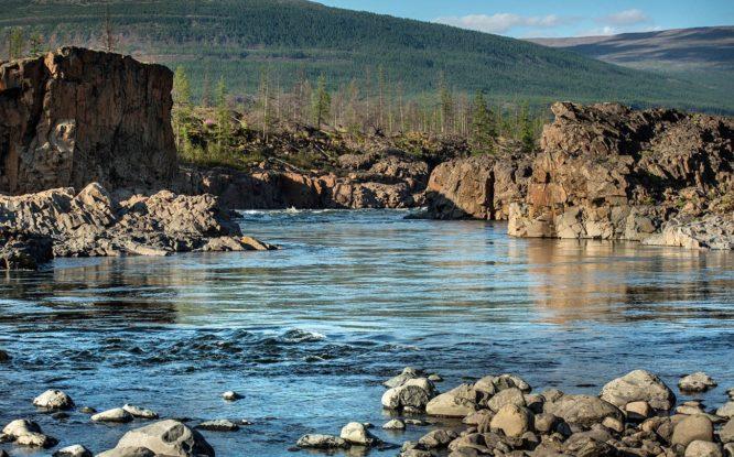 Ученые выяснят, как пресноводные организмы попали в Арктику