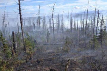 Возле Норильска снова начали гореть торфяники