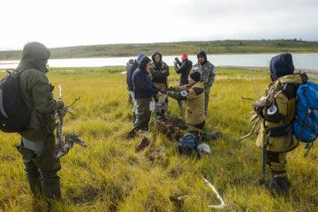 Ученые завершили полевой этап работ Большой норильской экспедиции