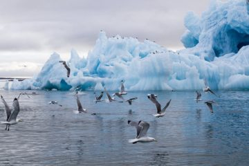 Сибирские ученые изучили атмосферу над Арктикой