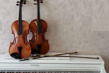 Дудинская детская школа искусств приобрела 27 новых скрипок