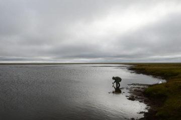 Предварительный ущерб водоемам от аварии в Норильске – около 68 миллионов рублей