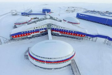 В Арктике создадут международную научную станцию «Снежинка»