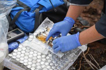 Лабораторные работы Большой норильской экспедиции выполнены на 70 процентов