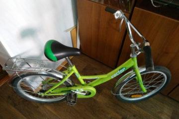 За велосипед – шесть месяцев лишения свободы