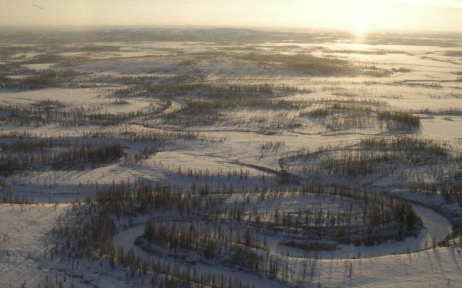 «Сургутнефтегаз» получил три участка на Таймыре