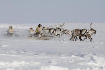 Союз коренных малочисленных народов обратится в Минюст из-за ограничений на хозяйственную деятельность