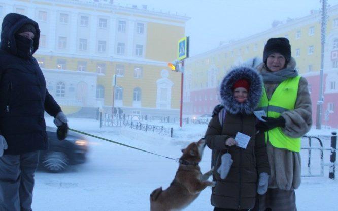 В Норильске полицейские и родители провели акцию «Соблюдай ПДД!»