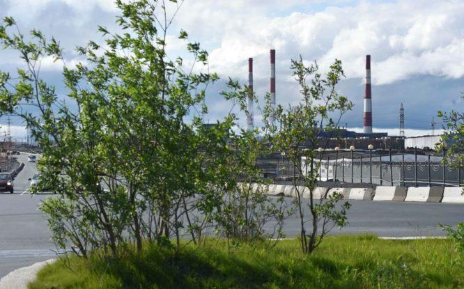 «Норникель» разрабатывает большую экологическую стратегию