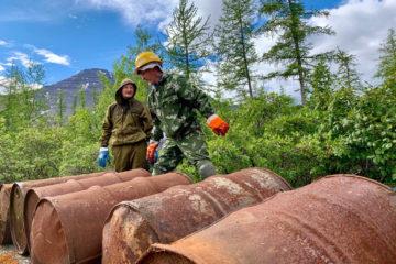 Десять лет займет очистка заповедников Таймыра от советских бочек с ГСМ