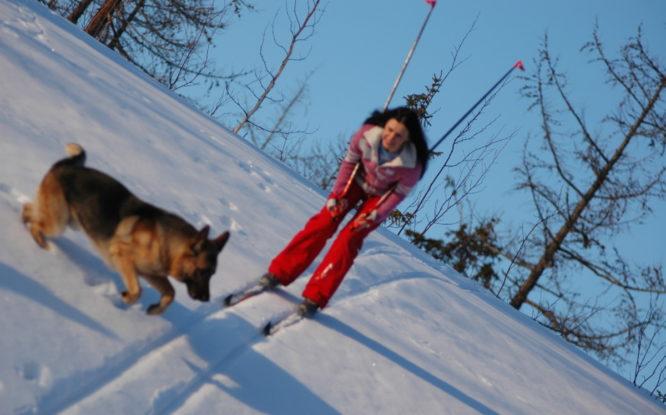 Вместо «Лыжни России» в Норильске пройдут городские эстафеты