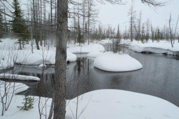 На этой неделе погода в Норильске будет со знаком плюс