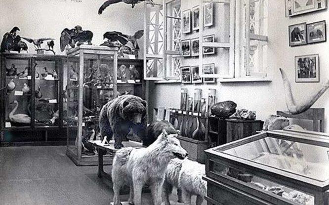 Первый Музей Норильска создали в бараке при геологическом отделе